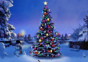 Snowman Christmas Tree Snow Winter Nature Desktop Background Images