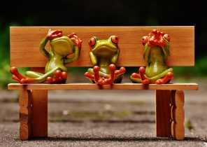 frogs-1610563__340