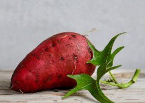 sweet-potato-2086784__340