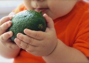 avocado-1476493__340