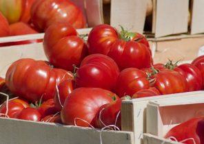 tomatoes-4260259__340