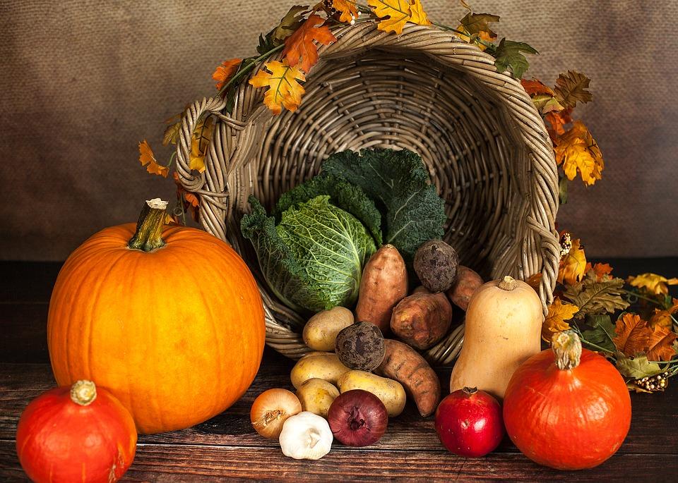 pumpkin-1768857_960_720