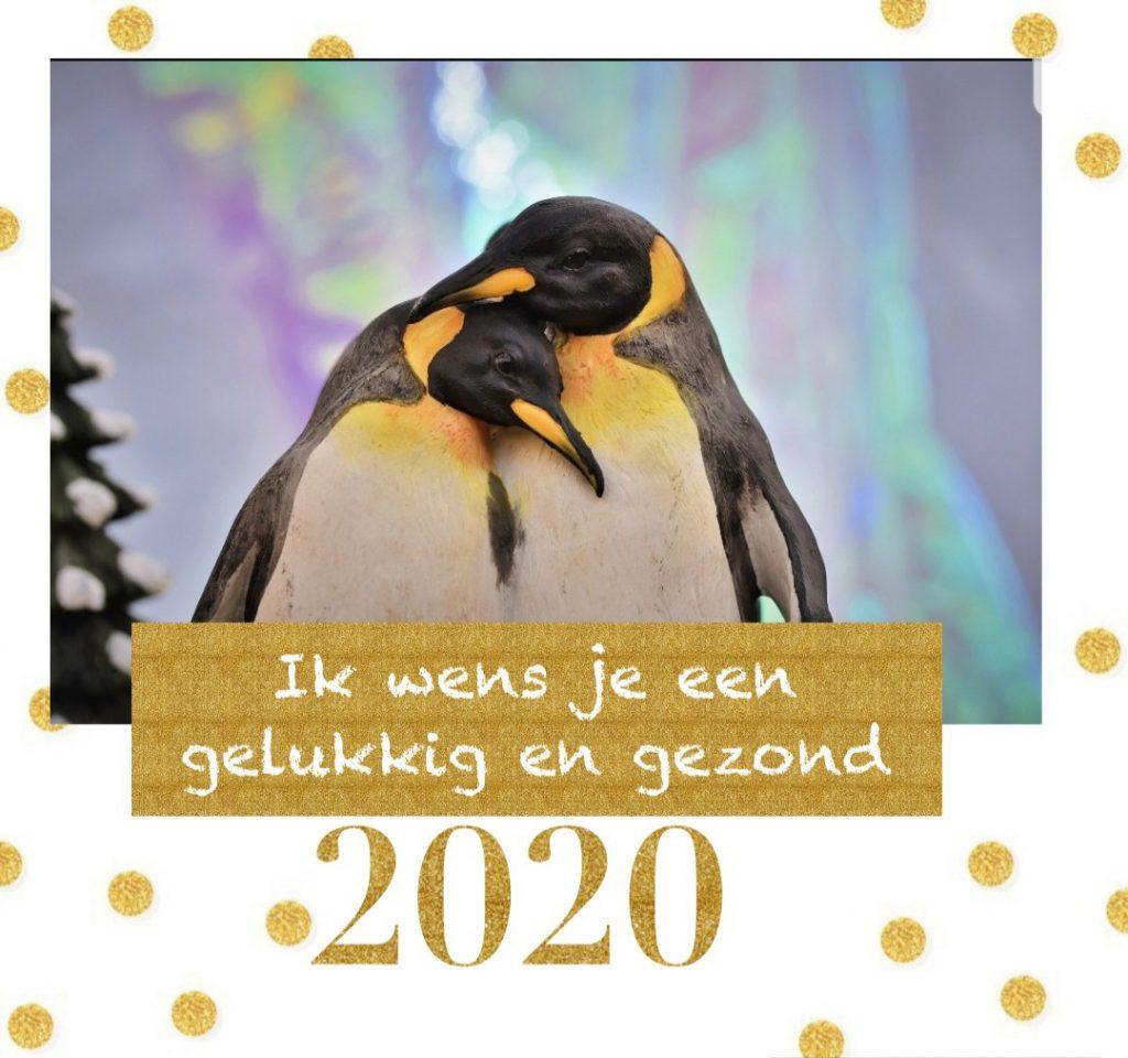 20191229_191739